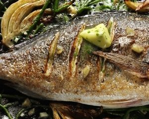 71624_sea_bream