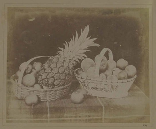 Plate XIV from The Pencil of Nature, A Fruit Piece, William Henry Fox Talbot © Science Museum Group collection history of food photography
