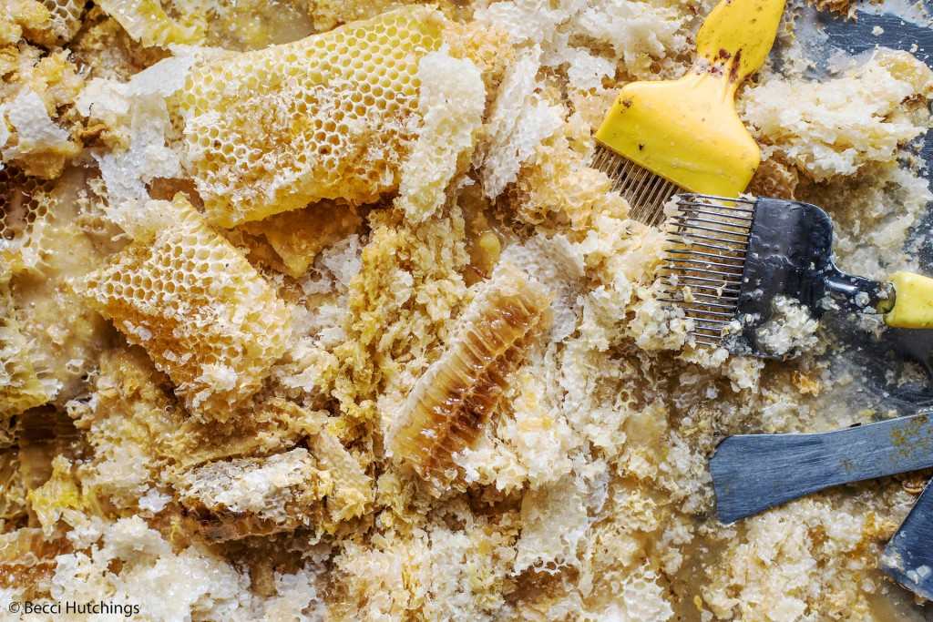 Becci Hutchings_Honeycomb and Wax_PinkLady copy
