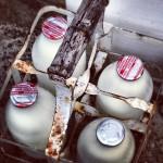 Charlotte Turner - Morning Milk Delivery