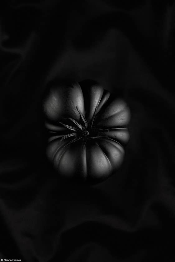 HC_nando esteva_black tomato_credited