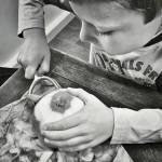 Jonathan Gregson - Peeling Apples
