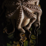 Lukas Lienhard - Portrait of Pulpo