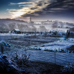 Matt Oliver - Allotment on a cold winter morning