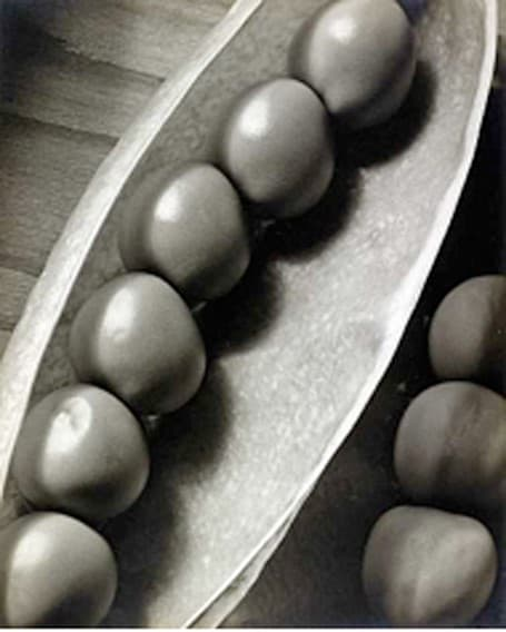 Peas in a Pod, circa 1935 by Edward W. Quigley A silver gelatin print food photography