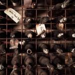 erin-latimore_museum_wines