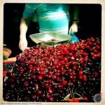 jacquline_franklin_cherries-at-borough-market