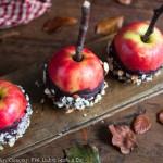 joan_ransley_bonfire_apples