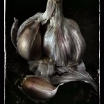 lisa_barber_garlic