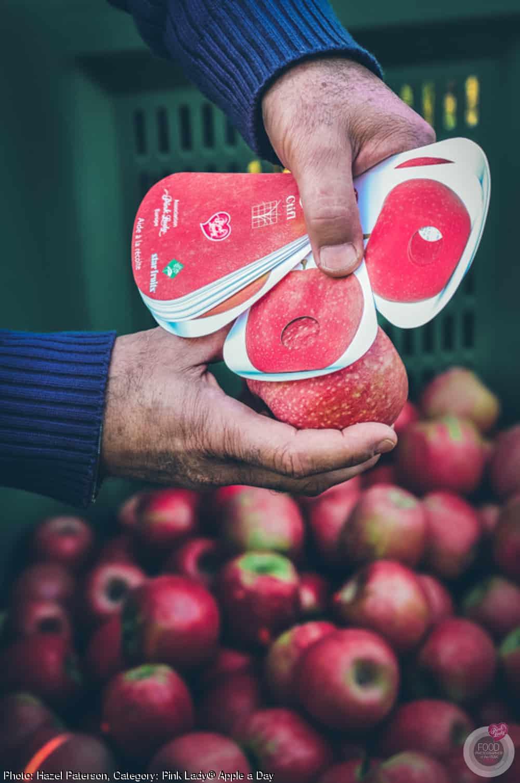 pink-lady-apples-1-14-16-Jan-15