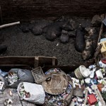 sandro_madelena_piggery-in-garbage-city