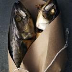 suzanne_kantak_fish